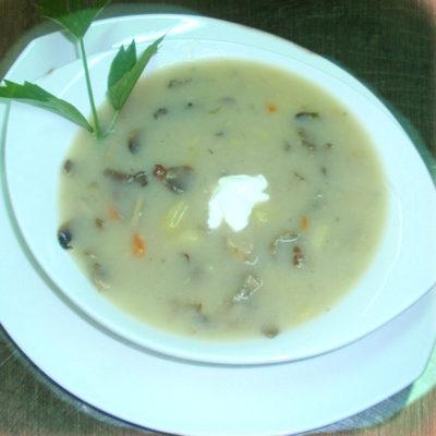 gobova-juha
